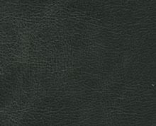Etna Black Photo Colour Option