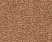 Birch Biscuit Faux Leather Photo Album Cover