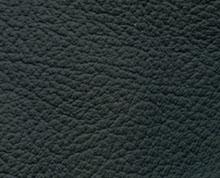 Birch Black Faux Leather Photo Album Cover