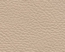 Birch Blush Beige Faux Leather Photo Album Cover