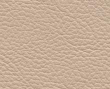 Birch Blush Beige Faux Leather Photo Album Cover