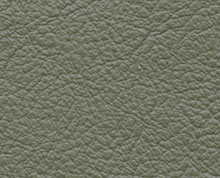 Birch Lichen Faux Leather Photo Album Cover