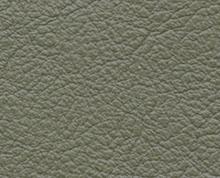Birch Lichen Faux Leather Photo Album Cover