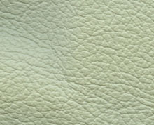 Birch Mint Faux Leather Photo Album Cover