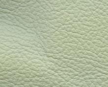 Birch Mint Faux Leather Photo Album Cover