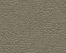 Birch Mushroom Faux Leather Photo Album Cover