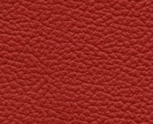 Birch Postbox Faux Leather Photo Album Cover