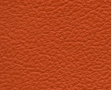 Birch Sunset Faux Leather Photo Album Cover